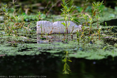 Protecting Our Waterways: 5 Steps for Reducing Plastic Waste