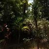 Madagascar 2017 (11)