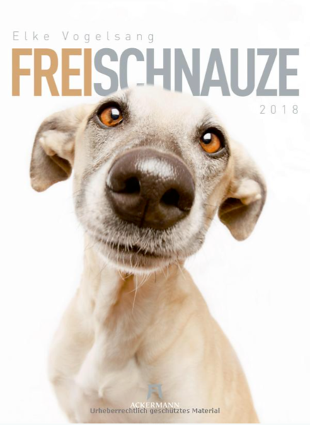 FreiSchnauze2018.png