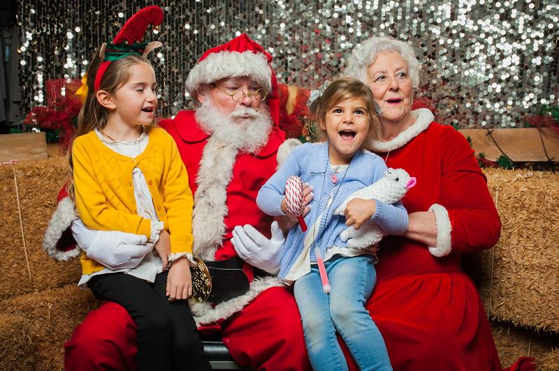 Christmas Roundup 2018-223.jpg
