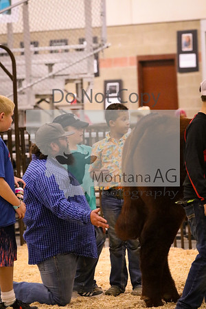 Beef Fitting Contest