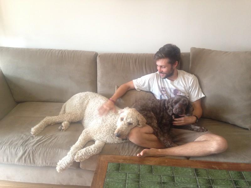 Dog Love.JPG