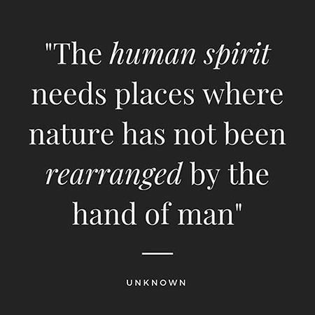 Human Spirit.jpg