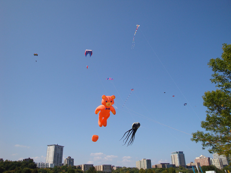 A handful of the kites being flown on Kite Festival Weekend at Juneau Park at the Milwaukee Lakefront