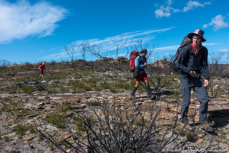 Walking across scorched tops