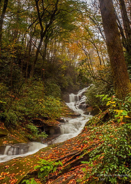 Roaring Creek Falls 0856.jpg