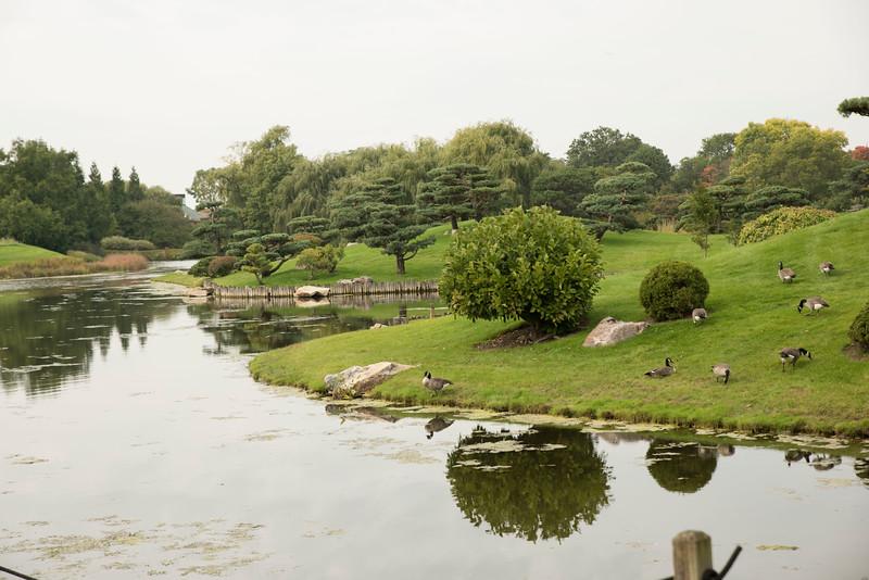 Chicago Botanic Garden 104.jpg
