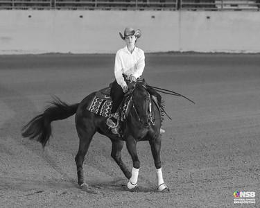 Friday Novice Horse Non Pro Set 1
