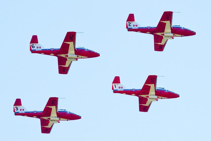foursnowbirds.jpg