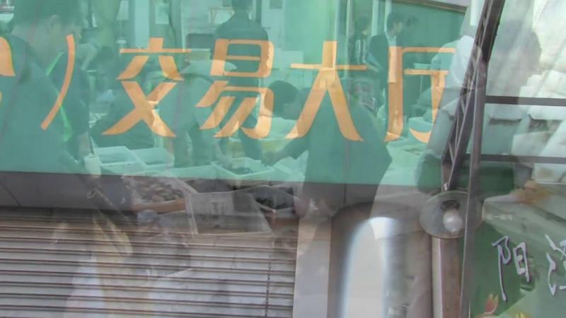 I Got Crabs Beijing 2009 © Lewis Sandler Beijing Video Studio