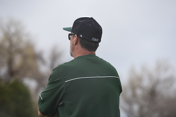 U12 Cougars Baseball - 2017