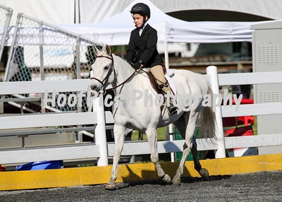 Comox Valley Pony Club 2016 Sunday Classes