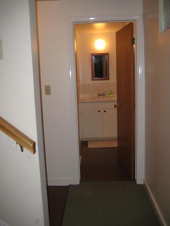 Tiny lower bathroom