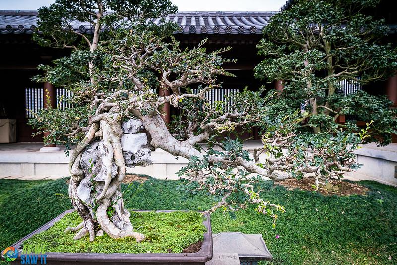Nan-Lian-Garden-00299.jpg