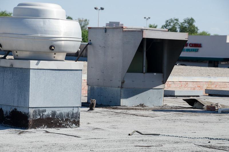 San Antonio Construction - 2014 -(023).jpg