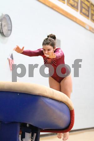 Gymnastics State Championships