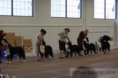 Puppy Dog 12-18 mos-PV 09