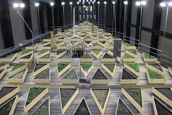 Tate Modern - Abraham Cruzvillegas: Empty Lot - 28 February 2016