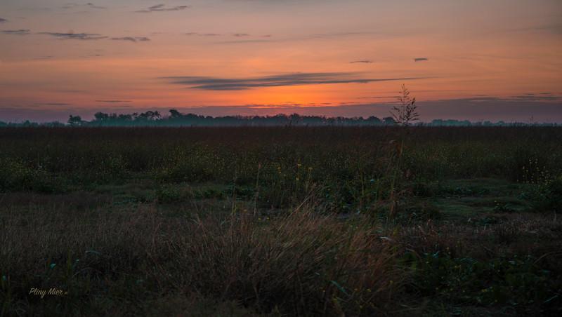 Sunrise Schertz_DWL3315.jpg