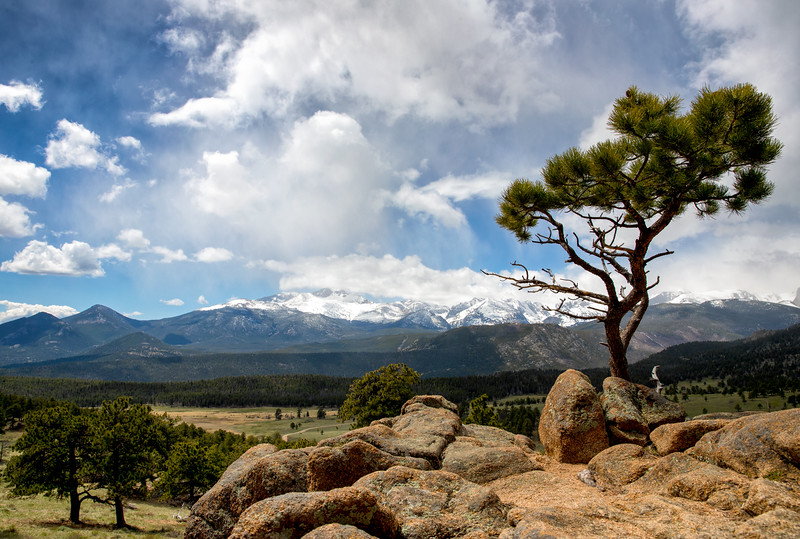 Beaver Meadows-Rocky Mountain National park.jpg