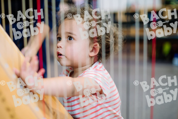© Bach to Baby 2017_Alejandro Tamagno_Chelmsford_2017-07-14 055.jpg