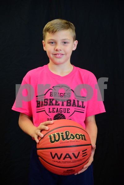 briggs Basketball 2016