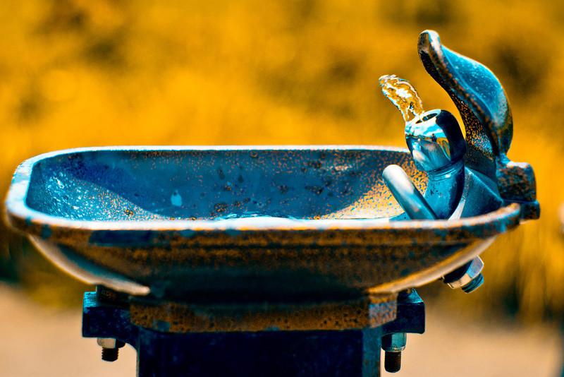 Drinking Fountain.jpg