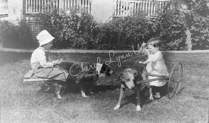 Boy-Girl-Cart-Dogs-WM.jpg