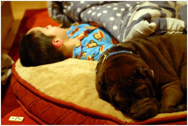 smokey and reid have sleepovers_22 & 27 Feb