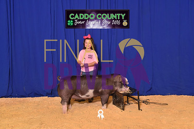 Caddo County Free Fair