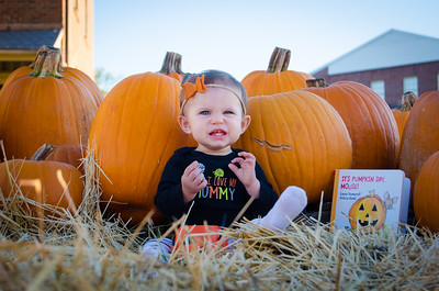 Youngbloods at the Pumpkin Patch