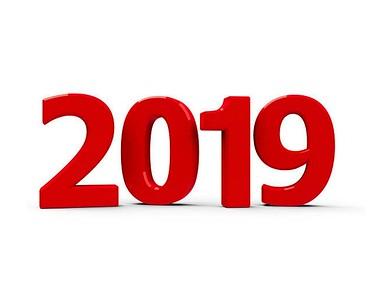 2019 Litters