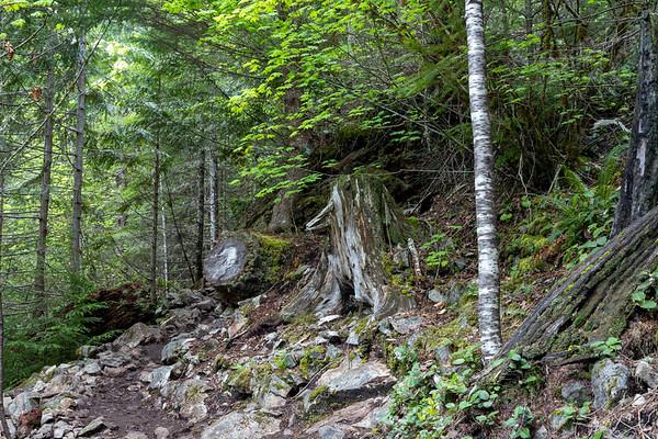 Hike to Teneriffe Falls, May 23, 2021