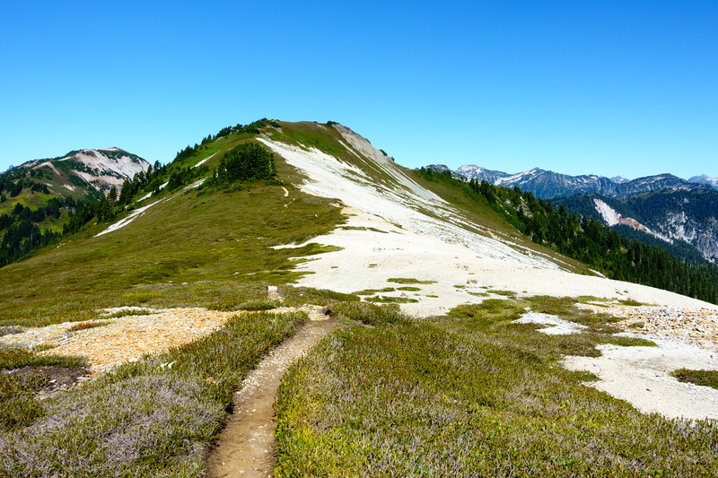 The saddle between pt. 5930 and Ruth Mountain was beautiful
