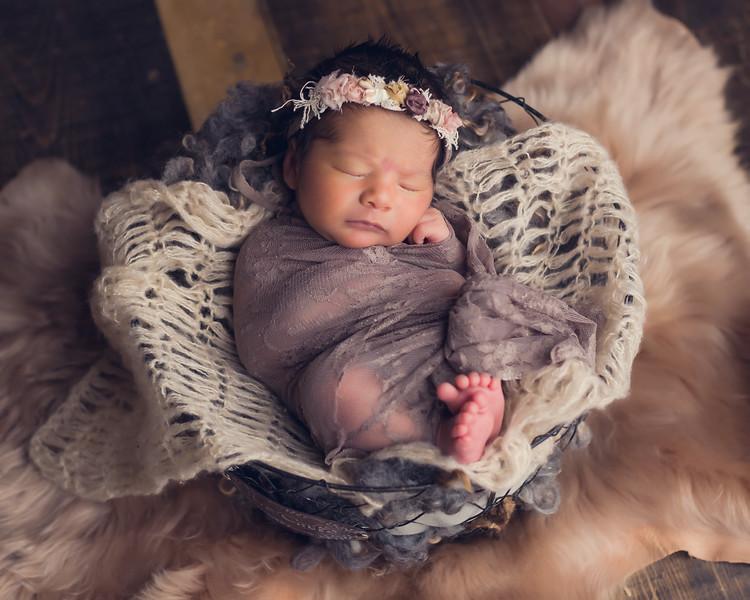 Katarina Montoya Newborn