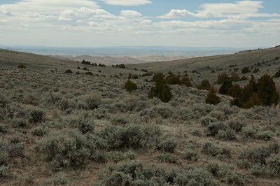 Castle Gardens, Central Wyoming