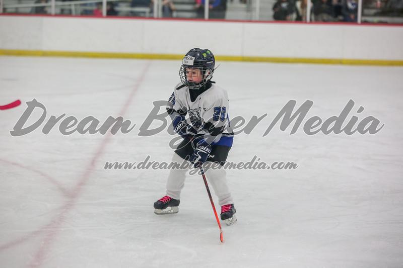 Blizzard Hockey 111719 7380.jpg