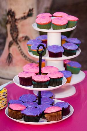 4/16/11 Emma Rose 1st Birthday