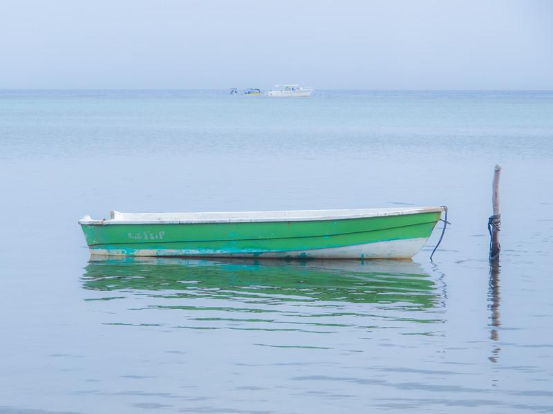 Cruise-7040030.jpg
