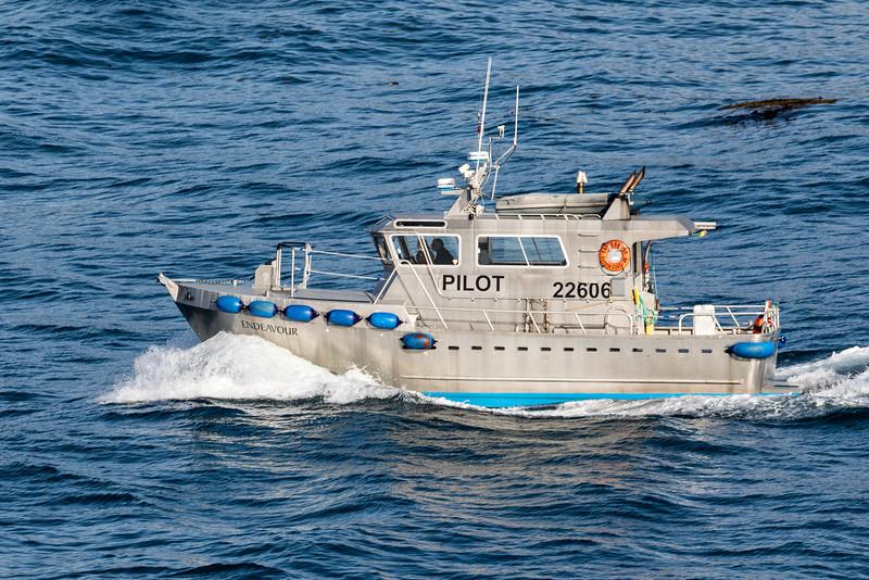 Pilot Ship in Glacier Bay