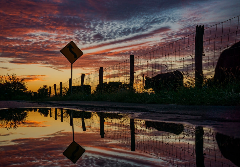 sunset - roadside puddle(p).jpg