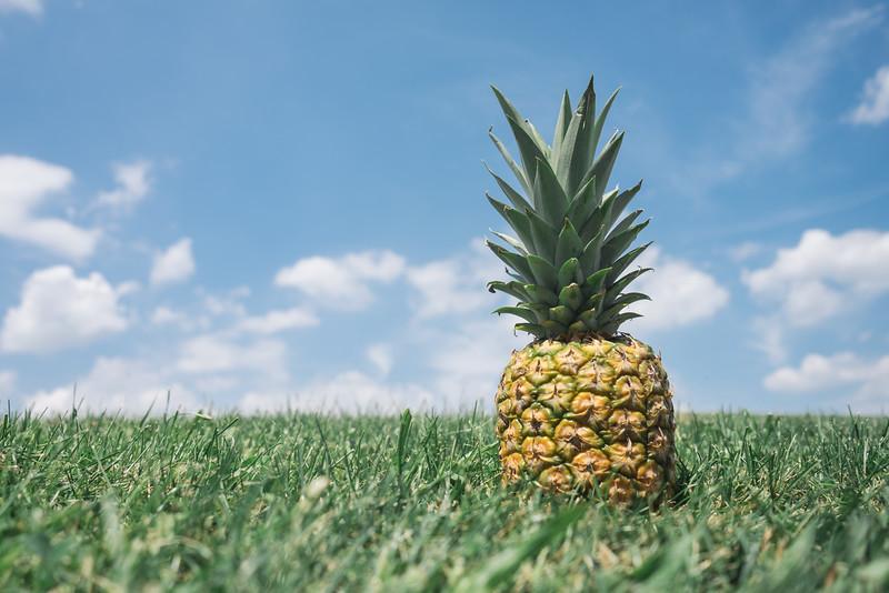 t-w4_309hi8-pineapple.jpg
