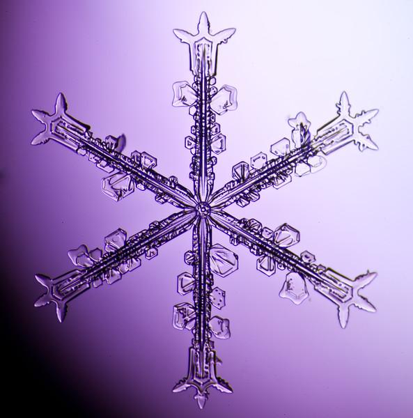 snowflake-3039-Edit.jpg