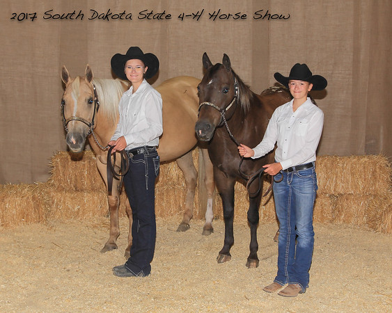 2017 SD State 4-H Horse Show