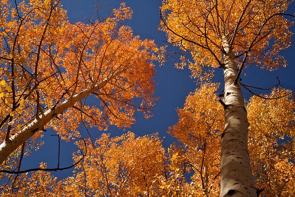 Colorado Sept, 2010