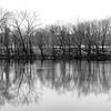 On the Banks of the Shenandoah _ bw
