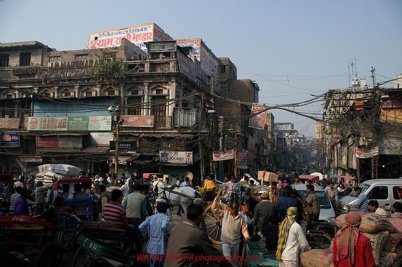 INDIA2010-0130-228A.jpg