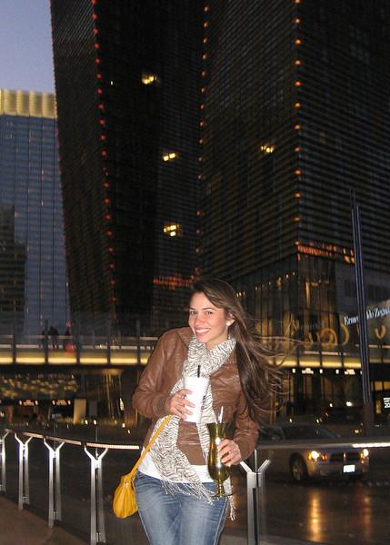 Miami and Las Vegas 2010 193.JPG