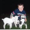 07w18n165 Lambs