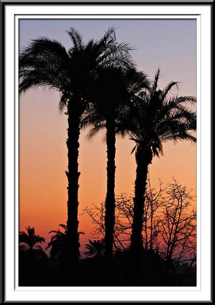 sunset (55687652).jpg